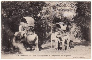 CAMBODIA-FRANCE..POST CARD showing ELEPHANT ENCAMPMENT from HOSPITAL...