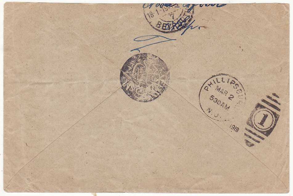 [20528]  PALESTINE - USA ..USED IN SYRIA..  1919 (Jan 6)